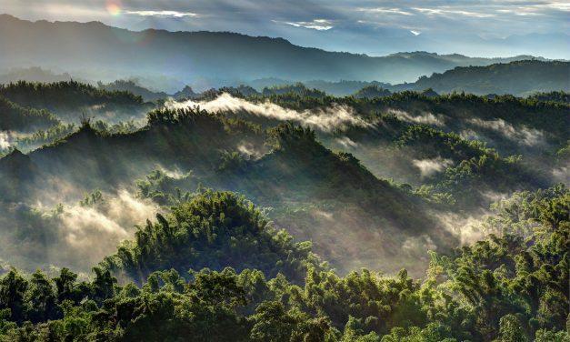 Work and Travel Taiwan – Alles was du wissen musst!