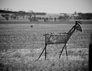 Tin Horse Highway Bleckpferd Figur