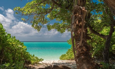 Unser Erfahrungsbericht zu den Malediven
