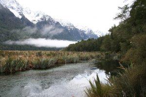 Die Fiordlande in Neuseeland