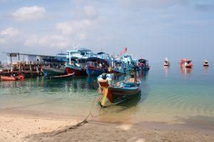 Boote am Hafen von Koh Tao