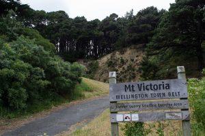 Strasse zum Mount Victoria Quarry