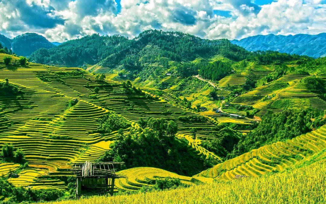 Top 5 Sehenswürdigkeiten in Vietnam