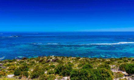 Einen Tag auf Rottnest Island