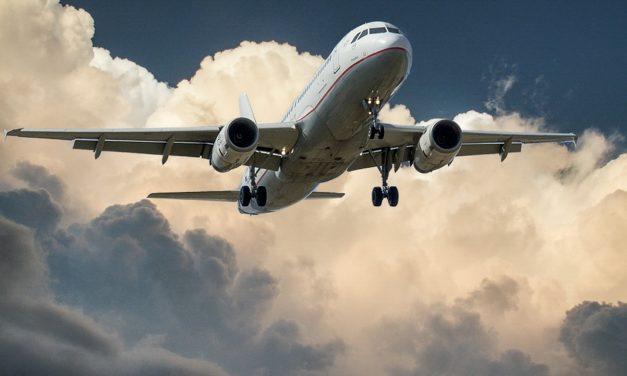 Flug verfolgen: Schnell und einfach zu bedienen