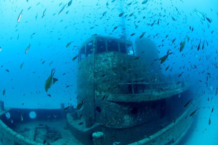 Das Schiffswrack der Rozi auf Malta